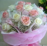 HONG KONG DOZEN PINK/WHT ROSES 3 WRAPPED BOUQUET