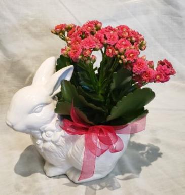 Hop To It! Ceramic Planter