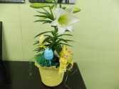 Hop To It Easter Lily plant