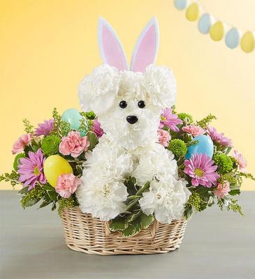 Hoppy Easter Adogable Arrangement