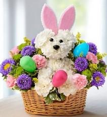 Hoppy Easter Easter