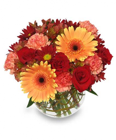 Hot And Spicy Bowl Flower Arrangement