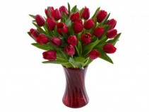 Hot Lips Valentine Tulips