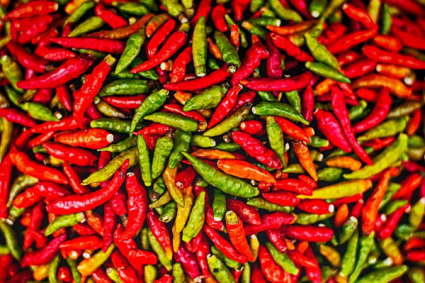 Hot Peppers Greenhouse