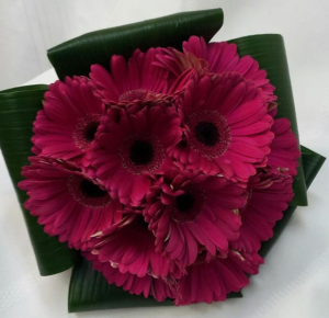 Hot Pink Gerbera Daisies Bridal Bouquet in Fredericton, NB | GROWER DIRECT FLOWERS LTD