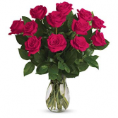 Hot Pink Rose Bouquet 12 STANDARD 18 DELUXE 24 PREMIUM