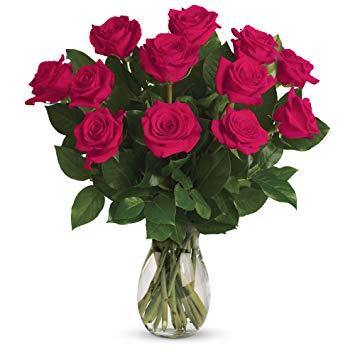 Hot Pink Rose Bouquet 12 STANDARD 18 DELUXE 24 PREMIUM
