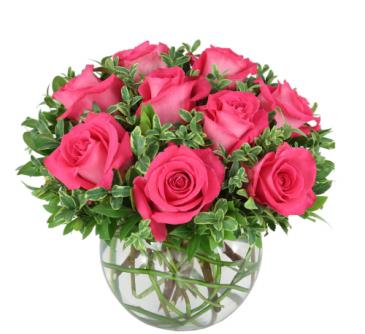 hot pink roses in a vase