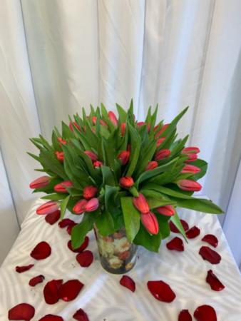 Hot Pink Tulips  Exotic arrangement