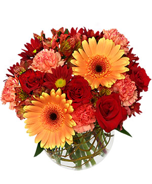 Hot & Spicy Vase of Flowers in Ozone Park, NY | Heavenly Florist
