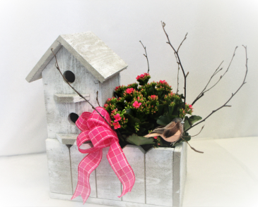 HOUSE OF BLOSSOMS BIRD HOUSE PLANTER