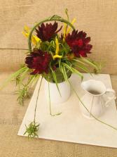 Housewarming Heartwarmer Houseplant