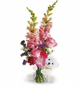 Hug a Bear Floral Bouquet in Whitesboro, NY | KOWALSKI FLOWERS INC.