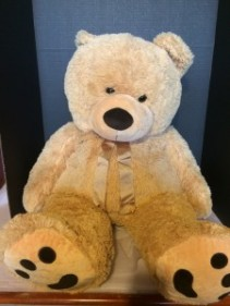 Huge Teddy Bears Plush