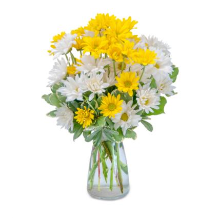 Hugs & Smiles Daisy Bouquet Arrangement