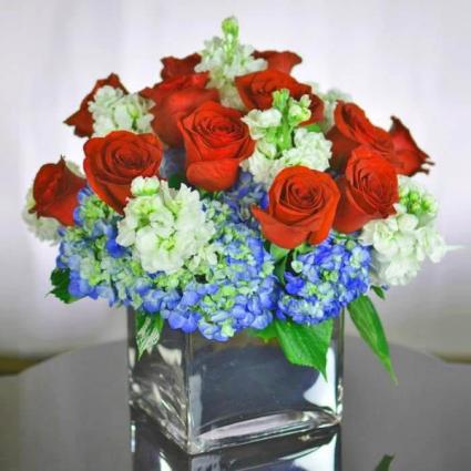 Hy Roses