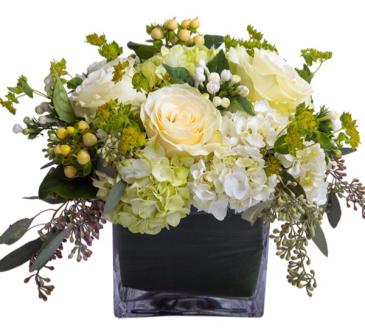 Hydrangea Antique Elegance  Cube vase