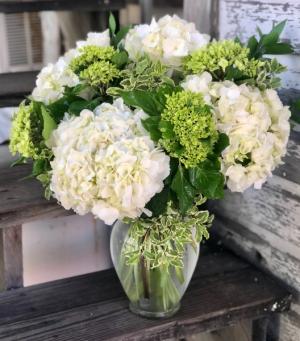 Hydrangea Beautiful Fresh Flower Arrangement in Vase in Key West, FL | Petals & Vines