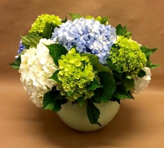 Hydrangea Combination Vase Arrangement