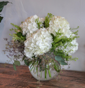 Hydrangea Dream Vased Arrangement