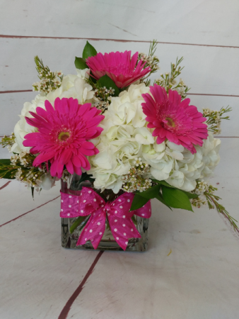 Hydrangea & Gerbera Garden Sorry, We've sold Out