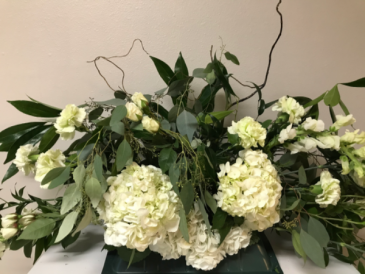 Hydrangea in Hints of Green Casket Flowers