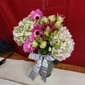 Hydrangea Love fresh