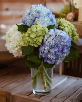 Hydrangea Lover Arrangement