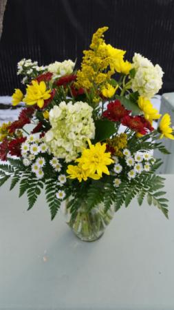 Hydrangea & Multi Daisy Sympathy Arrangement
