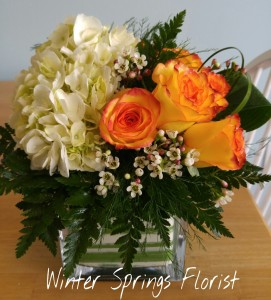 Hydrangea & Roses Clear Cube Vase in Winter Springs, FL | WINTER SPRINGS FLORIST AND GIFTS