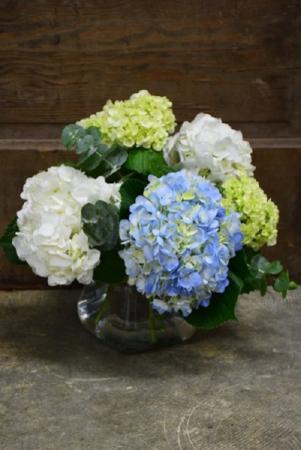 Hydrangea Skies Vase Arrangment