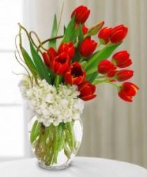 Hydrangea & Tulips Arrangement Tulips