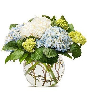Hydrangeas in Bloom Floral Bouquet