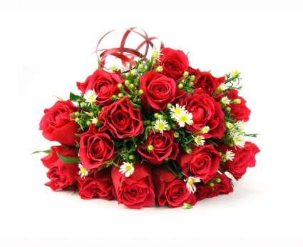 I Love You Bouquet SPECIAL!!!! 24 Red Roses