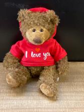 I love you hoodie bear