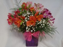 I LOVE LILLY!!  Alstra maria lillies arranged in  a vase with baby's breath!!