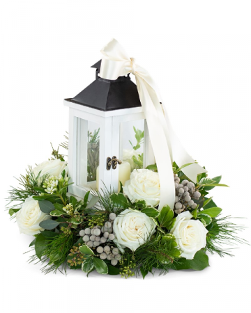 Illuminated with Grace Arrangement
