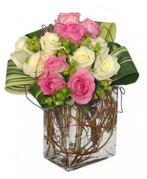 I'm Yours Forever Arrangement in Fort Smith, AR | EXPRESSIONS FLOWERS, LLC
