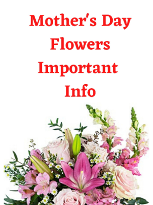 Important Information   in Calgary, AB | Petals 'N Blooms