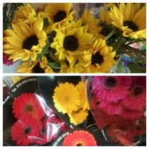 In the cooler this week for carry out! Sunflowers 10 for $10 wrapped & Gerbera Daisy 10 for $20 wrapped only