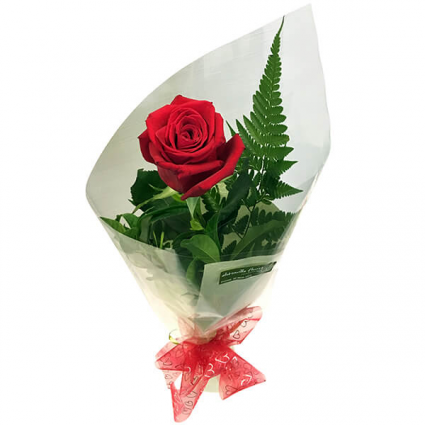 Individual Rose Wrapped Bouqet