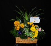 Indoor Garden Basket  3D Signature Design