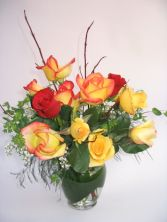 Infatuation Dozen Colored Roses