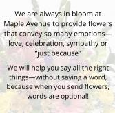 Info  in Warsaw, Indiana | Maple Avenue Flowers