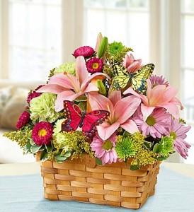 Inspirational Garden Basket