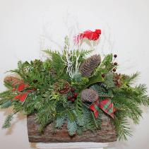 Into the Woods We Go Holiday Arrangement *Local Delivery Only*