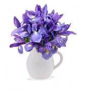 Iris in Bloom Floral Bouquet