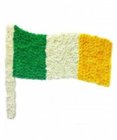Irish Flag Standing Arrangement