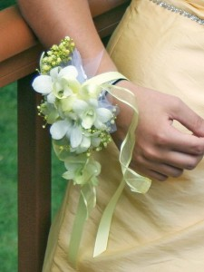 Irresistible Orchid Wrist Corsage in North Adams, MA | MOUNT WILLIAMS GREENHOUSES INC