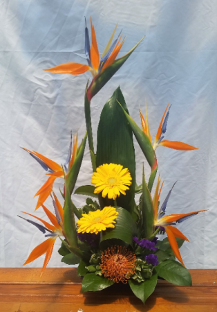 Island Dreaming Container Arrangement